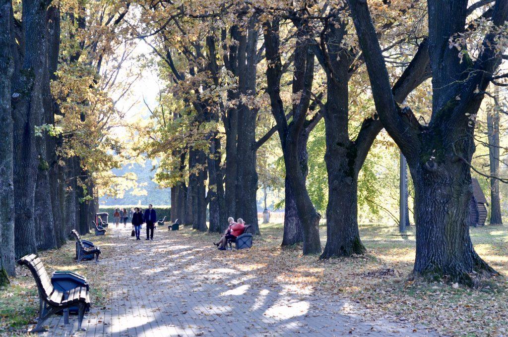 Осень в Минске 2020